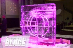 Sculpteur sur Glace en Direct