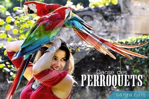 Danse des Perroquets