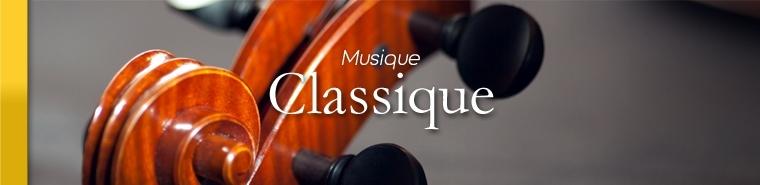 Formations musique classique - SANZA, Animation Evénementielle